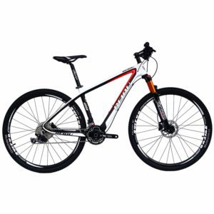 Best Entry Level Mountain Bike for Beginners