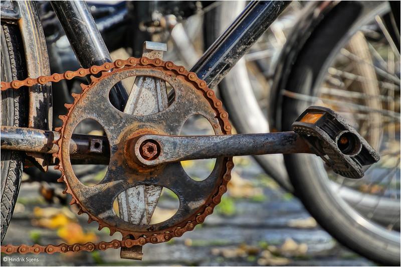 How Often Should I Lubricate My Bike